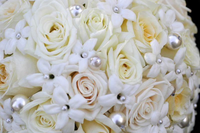 Milena Santoro Floral 7-213