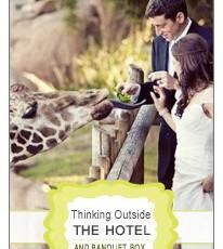 Unique Wedding Sites